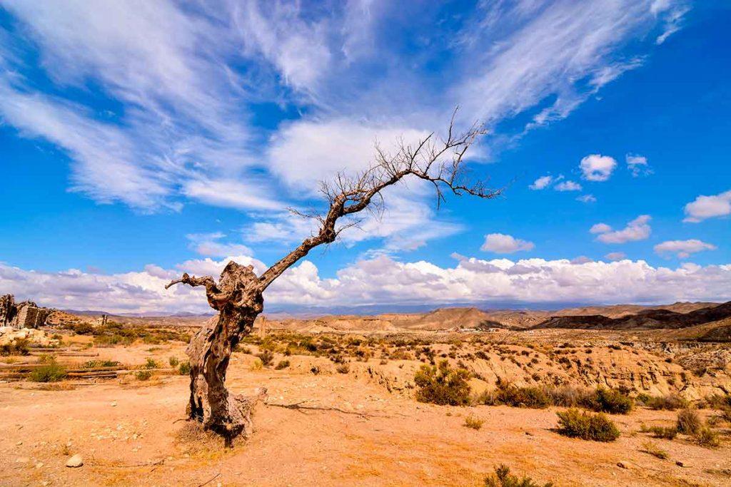 El desierto de Tabernas Almeria